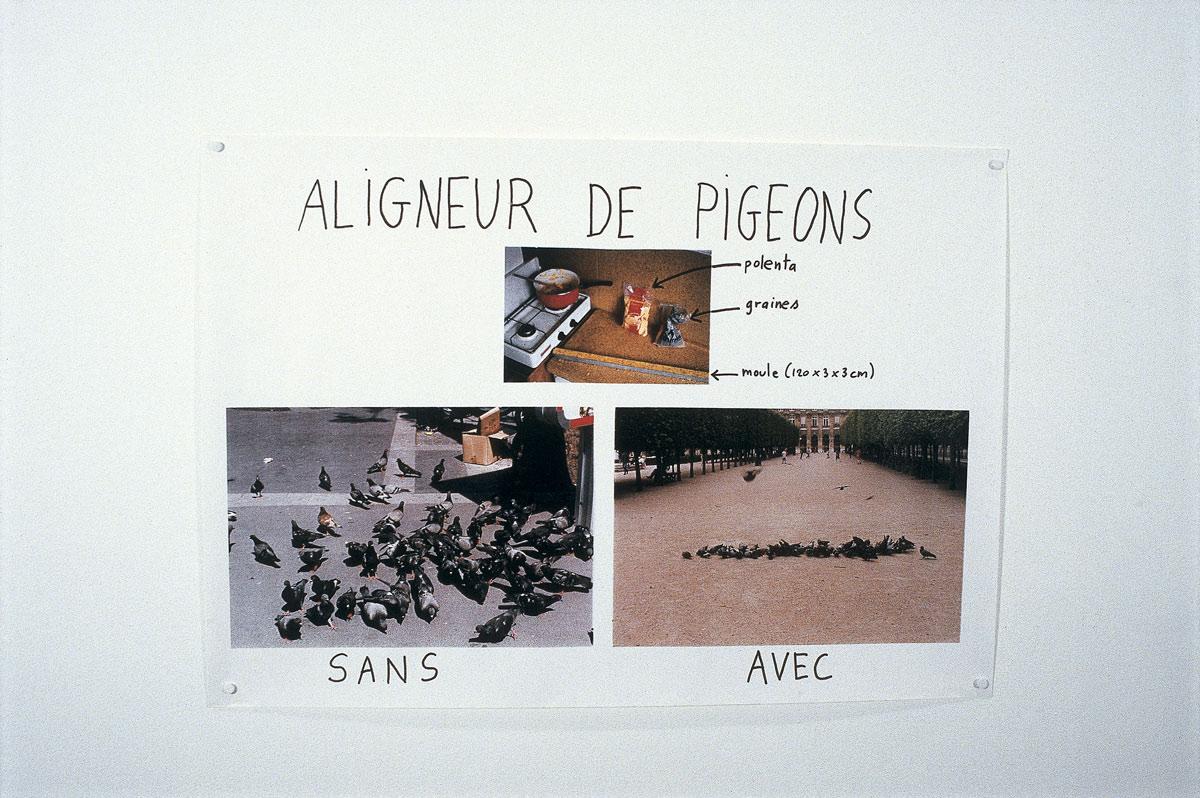 1996-ALIGNEUR-DE-PIGEONS.jpg