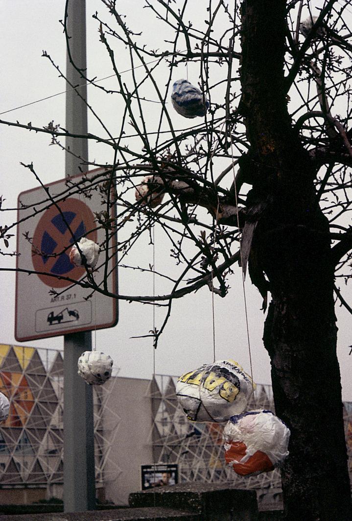 ACTIONS-PEU-30-boules-arbre-1.jpg