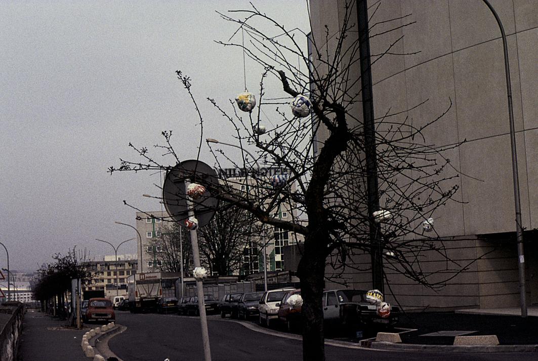 ACTIONS-PEU-31-boules-arbre-2.jpg